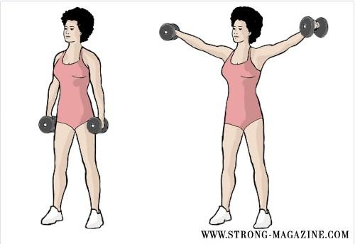 Trainingsplan Abnehmen Muskelaufbau und Definition 3er Split