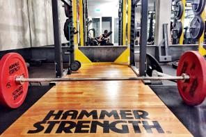 Trainingsplan Abnehmen, Muskelaufbau und Definition