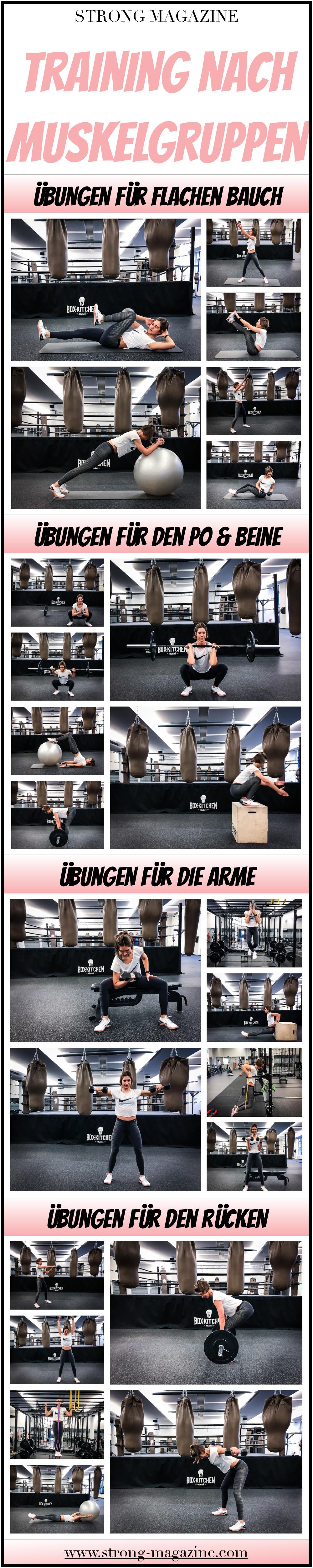 Welche Übung für welche Muskelgruppe? Infografik Training nach Muskelgruppen