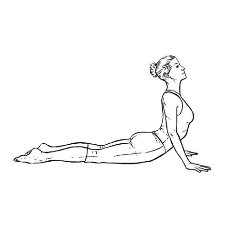 Yoga Übung: Kobra - Yoga Übungen fürs Büro