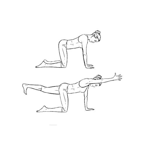 Yoga Übung: Tisch - Yoga Übungen fürs Büro
