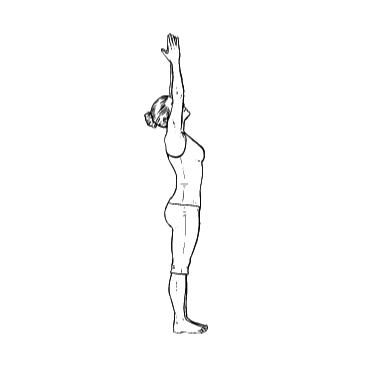 Yoga Übung: Aufwärtsgruß - Yoga Übungen fürs Büro