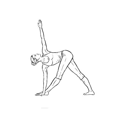 Yoga Übung: gedrehtes Dreieck - Yoga Übungen fürs Büro