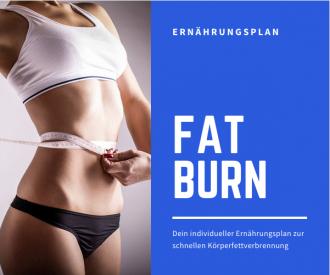 Fatburner Ernährungsplan - individuell angepasst zur schnellen Gewichtsreduktion und Körperfettverbrennung